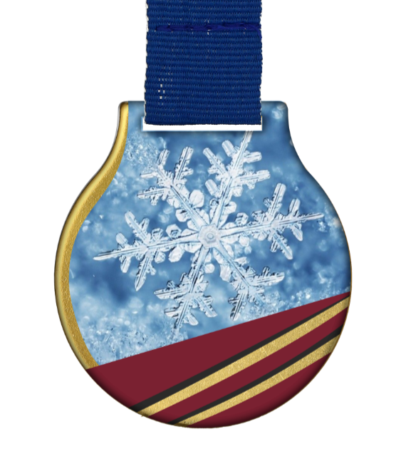 Steel medal with ribbon MC61/G/WINTER10 1