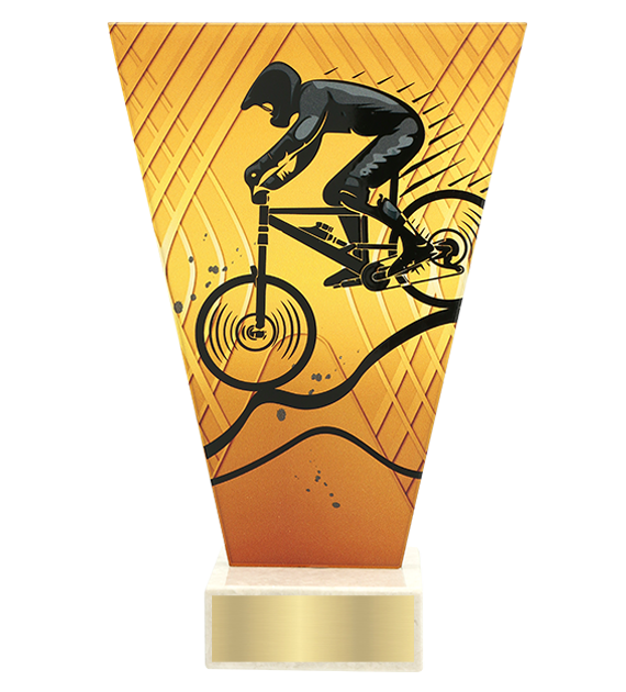 <span>Glass award  – mountain biking<span style='color:#ff0066; font-weight:800;'> - PRODUCTION UP TO 5 WORKING DAYS</span></span> VL1/MTB 1