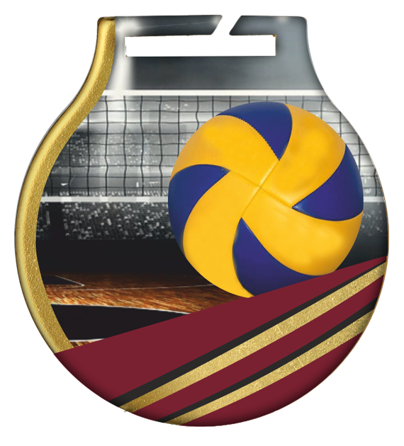 Steel medals with a colour print - Voleyball  MC61/G/VOL 1