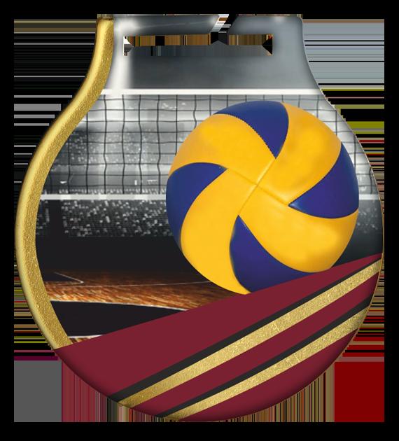 Stahl-Medaillen mit Aufdruck - Volleyball  MC61/G/VOL 2