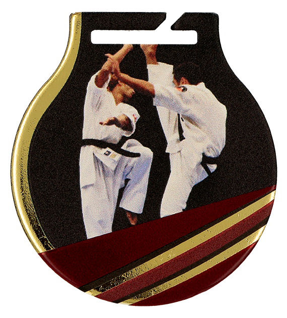 Steel medals with a colour print - Karate  MC61/G/KAR 1