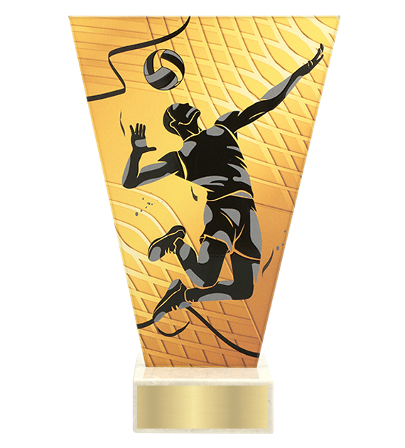 <span>Glass award  – volleyball<span style='color:#ff0066; font-weight:800;'> - PRODUCTION UP TO 5 WORKING DAYS</span></span> VL1/VOL 1
