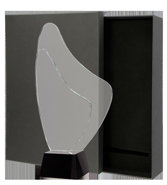Glastrophäe mit Etui C070 6