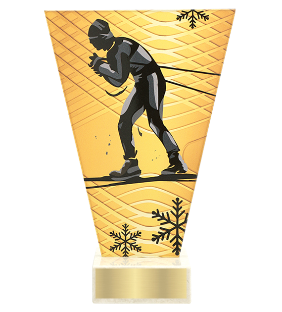 <span>Glass award  – ski running<span style='color:#ff0066; font-weight:800;'> - PRODUCTION UP TO 5 WORKING DAYS</span></span> VL1/SKI1 1