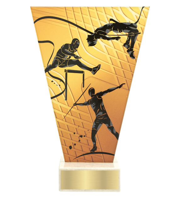 <span>Glass award  – athletics<span style='color:#ff0066; font-weight:800;'> - PRODUCTION UP TO 5 WORKING DAYS</span></span> VL1/ATH 1