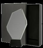 Glass award with presentation box C069 1
