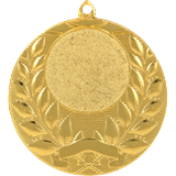 Medal 50 mm, 1st place - gold MMC1750 1