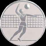 Aluminum emblem - voleyball  D2-A6/S 1