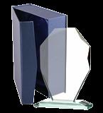Glastrophäe im Etui G007 1