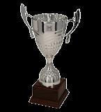Silver metal cup DABIS 3122 1