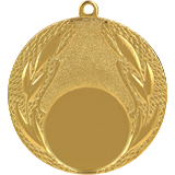 Medal 50 mm, 1st place - gold MMC14050 1