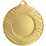 Medal 50 mm, 1st place - gold MMC5950 1