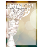 Paper diploma - overall DYP122 1