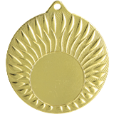 Gold medal – 1st place – General MMC24050 1
