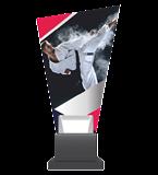 Glass trophy on a plastic base - karate CG02 KAR 1