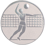 Aluminum emblem - voleyball  D1-A6/S 1