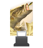 Glass trophy on a plastic base - fishing CG01 FIS 1
