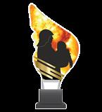 Трофей из оргстекла на площадке CP01/FIR 3