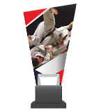 Glass trophy on a plastic base - judo CG02C/JUD 3
