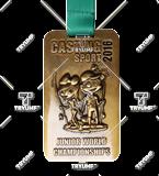 Bespoke medal – example M.INNE15 1