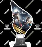 Trofeum z plexy na podwyższeniu - BOKS CP01/BOX 1