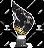 Trophy from plexy on a platform - FENCING CP01/FEN 1